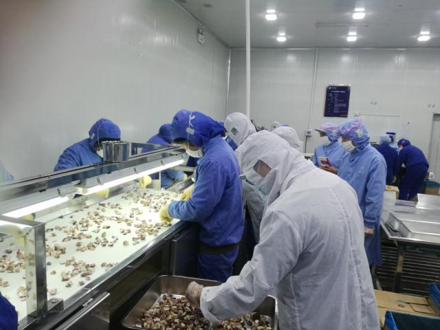 大理野生菌绿色食品深受日本客商钟爱